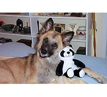 Cody and his Pal the Panda Photographic Print