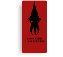 I'm fire, i'm death! cit. Reapier! Canvas Print