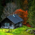 Home Is Not A House by Philippe Sainte-Laudy
