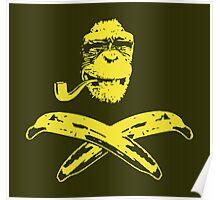 Monkey Roger Poster