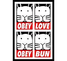 Obey Love Obey Bun Photographic Print