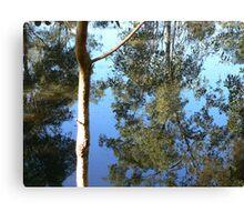Saturday Garden Pond Canvas Print