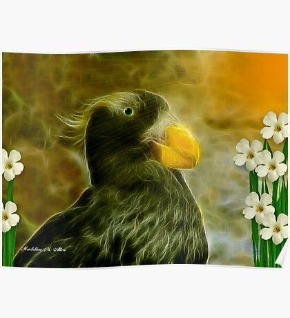 NESTING PUFFIN Poster