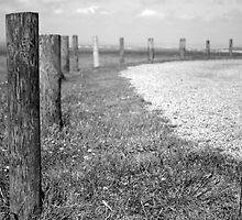 Fence posts by Victoria Kidgell