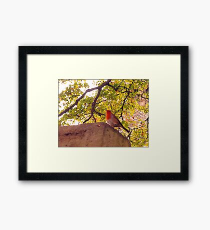 You Ought To Show Me The Door Today Framed Print