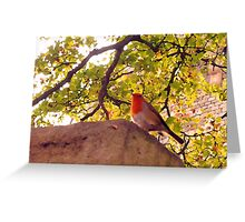 You Ought To Show Me The Door Today Greeting Card