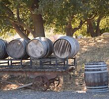 Old Barrels by smilinginsonoma