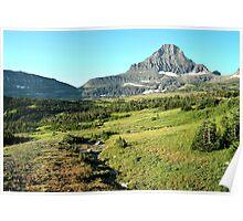 Land of Bighorn Sheep Poster