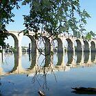 Railroad Bridge over the Susquehanna River  by mstinak