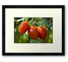 Untitled.00107 Framed Print