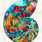 Colorful Nautilus Shell by Sharon Cummings by Sharon Cummings