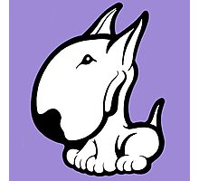 Odie English Bull Terrier Photographic Print