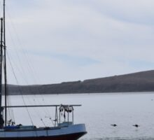 Boat in the Bay Sticker