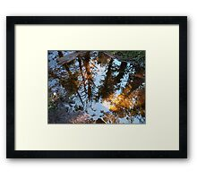 Into The Looking Glass Framed Print