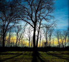 Untitled.00027 by Byron  Gates Jr