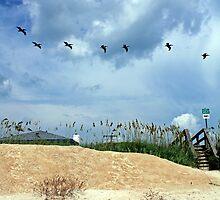 Seven Birds A Flying by AshleyKush