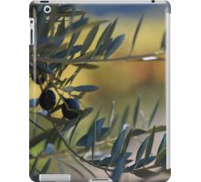 Dry Creek Valley Olives iPad Case/Skin