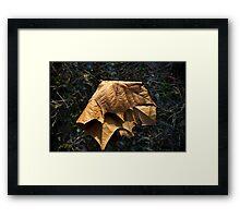 Untitled.00082 Framed Print
