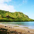 Kahana - Hawaii by abfabphoto