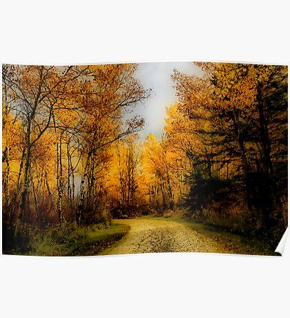 Autumn Colours I Poster