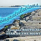 NAUTICAL BANNER - STAR OF THE MONTH - NOT FOR SALE by MotherNature