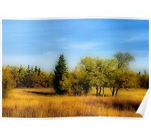 Autumn Colours IV Poster