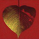Burning Love by iamelmana