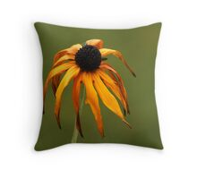 An Ageing Beauty ......... Throw Pillow