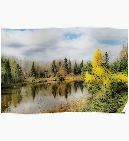 Autumn Colours VII Poster