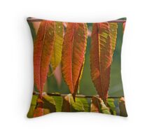 Mother Nature's Laundry Line Throw Pillow