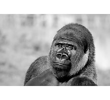 My Mate Primate Photographic Print