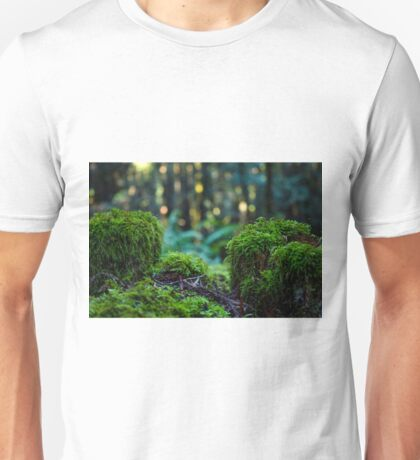 Moss fence with dancing light Unisex T-Shirt