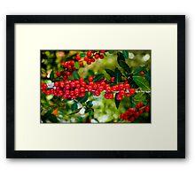Untitled.00097 Framed Print