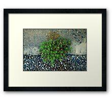 Untitled.00104 Framed Print
