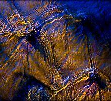 Untitled.00111 by Byron  Gates Jr