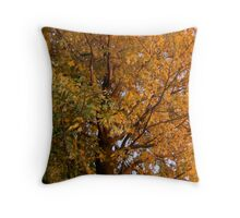 Gleam Of Gold Throw Pillow