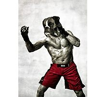 The boxer fighter Photographic Print