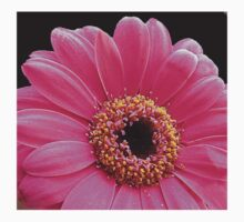 Stunning Pink Gerbera Daisy on Black Background Kids Clothes