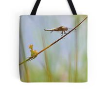 Male Chaser . Tote Bag