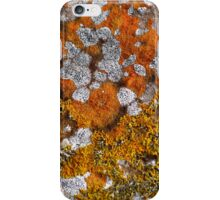 African Plains iPhone Case/Skin