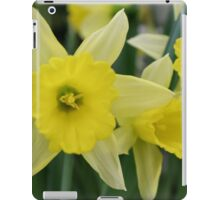 Spring flowers without showers iPad Case/Skin