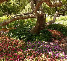 Prescott Park by Jonathan Eggers