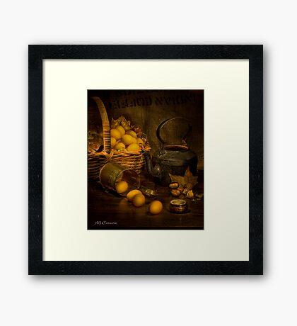 Old Masters Series (print 4)  Framed Print
