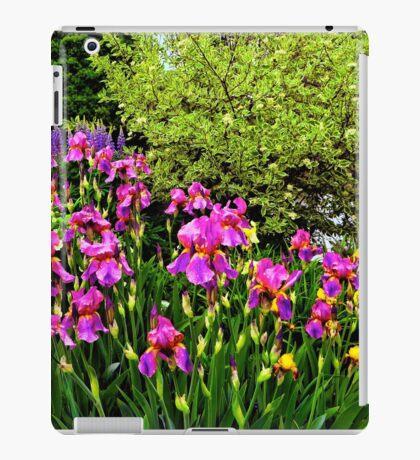 Border of Beauty iPad Case/Skin