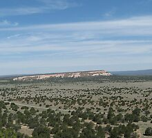 Wide Open Spaces, view from the top of El Morro, 60 miles south of Grants, NM by BHarrisonArts