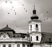 Transylvania by iuliazaraza