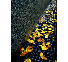 Autumn Grate Photographic Print