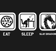 Eat, Sleep, Save Dragons (Repeat) by thehookshot