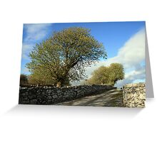 Scenic rural path Greeting Card