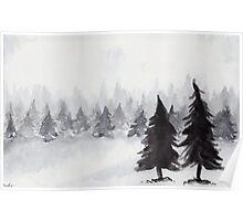 White Winter Poster